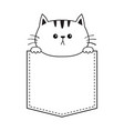 cat in the pocket holding hands doodle contour vector image vector image