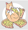 cat pizza vector image vector image
