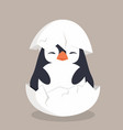 cute penguin hatched in egg vector image vector image