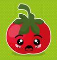 fresh tomato vegetable kawaii character vector image