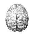 human brain consist dots connected lines in vector image vector image