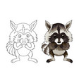raccoon funny animal cartoon character isolated vector image