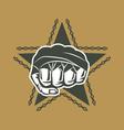 Street fighting emblem vector image