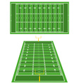 American Football fields vector image