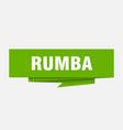 rumba vector image vector image