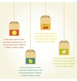 tea bags with fruit flavor infographics vector image