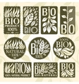 Bio Labels Collection vector image vector image