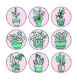 bright icon set of housplants in pots vector image