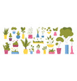 collection with flower pots with greenery vector image