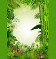 exotic tropical background vector image vector image
