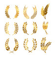 golden rye wheat ears wreaths elements for vector image vector image