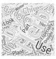 Herb Gardening Word Cloud Concept vector image vector image