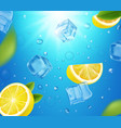 lemons ice cubes and sun shine in water bubbles vector image vector image