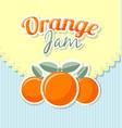 orange jam label in retro style on striped vector image vector image