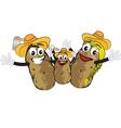 potato family vector image vector image