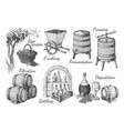 process of wine production vector image