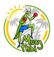 sun and muay thai vector image vector image