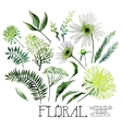 Watercolor green floral collection vector image vector image