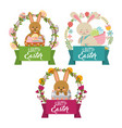 collection bunnies floral decoration frame happy vector image
