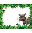 a warthog on nature frame vector image vector image