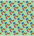 colorful butterfly seamless pattern vector image vector image
