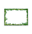 leaves frame white frame on background with vector image vector image