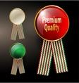 Retro golden framed label Premium design vector image