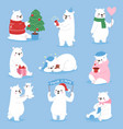 christmas white bear animal cute beauty vector image vector image