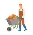 smiling man working on field cart with pumpkin vector image