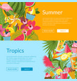 summer elements cocktails flamingo palm leaves vector image vector image
