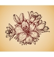 Vintage flower Hand drawn retro sketch lily vector image vector image