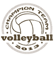 volleyball label vector image vector image