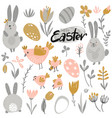 collection of rabbits chicken and flowers vector image