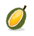 durian exotic fruit vector image vector image