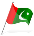flag of Pakistan vector image