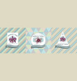 three colored labels with orchid vector image vector image