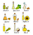 9 cooking oils in cute sketchy bottles vector image vector image