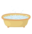 bath with bubbles vector image vector image