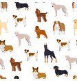 cartoon breed of dogs seamless pattern background vector image