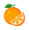 colorful whole and slice orange with green leaf vector image vector image