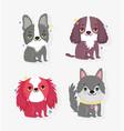 cute little dogs sitting domestic cartoon animal vector image