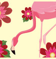 flamingo bird cute flowers vector image