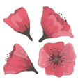 set hand drawn flowers vector image vector image