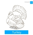 Turkey learn birds coloring book vector image vector image
