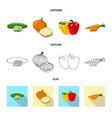 vegetable and fruit sign vector image