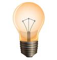 An orange bulb vector image vector image