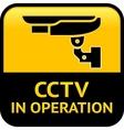 cctv warning pictogram vector image vector image