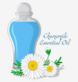 chamomile essential oil vector image vector image