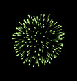 firework green sparkle isolated background vector image vector image