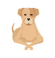 sad dog vector image vector image